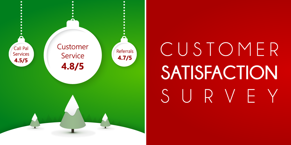 Call Pal customer satisfaction survey